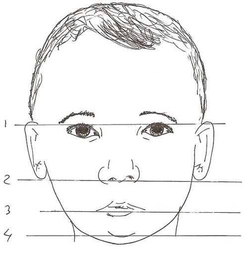 Как правильно рисовать голову человека